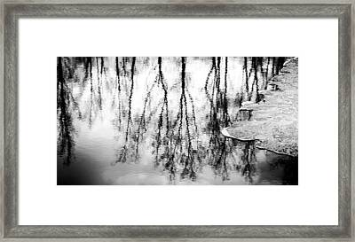 Amalgamation Framed Print