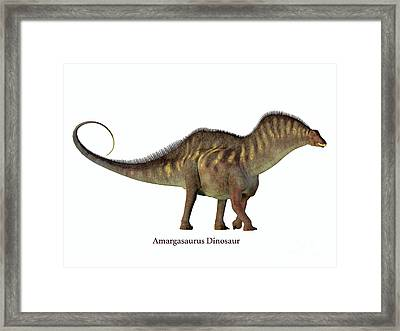 Amargasaurus Side Profile With Font Framed Print by Corey Ford