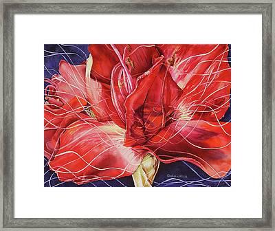 Amaryllis 1 Framed Print