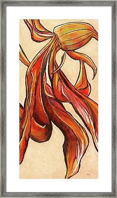 Amaryllis Bulb Framed Print