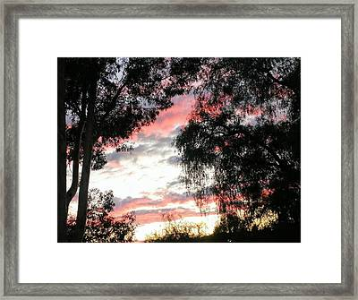 Amazing Clouds Black Trees Framed Print