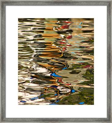 Amazing Color  Framed Print by Cayman Ben Lazzara