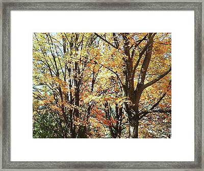 Framed Print featuring the photograph Amazing Fall by Irina Sztukowski