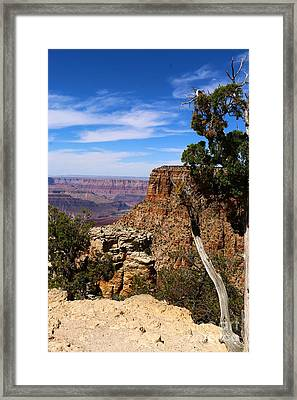 Amazing Grand Canyon Framed Print