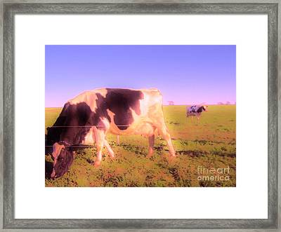 Framed Print featuring the photograph Amazing Graze by Susan Carella