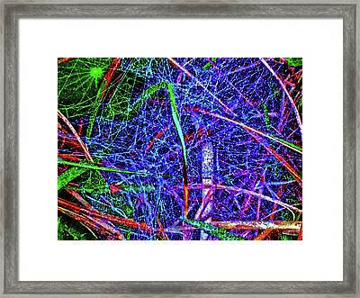 Amazing Invisible Web Framed Print