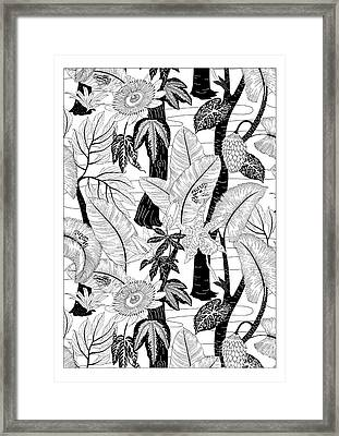 Amazon Black And White Framed Print by Jacqueline Colley