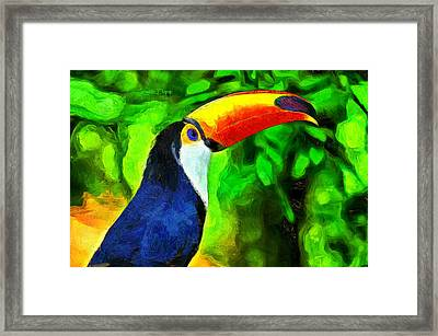 Amazon Forest Tucano - Da Framed Print