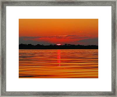 Amazon Gold Framed Print