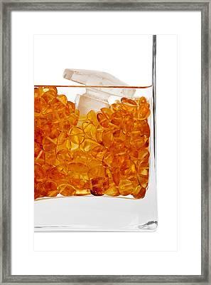 Amber #4984 Framed Print by Andrey Godyaykin