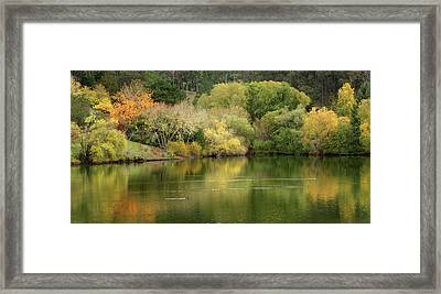 Amber Days Of Autumn Framed Print