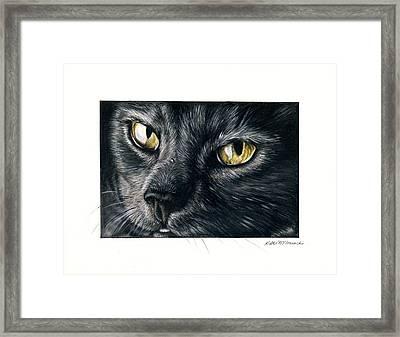 Amber Eyes Framed Print