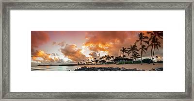 Amber Palms Framed Print