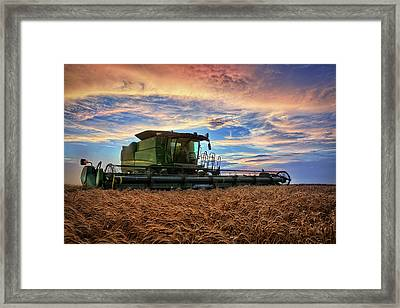 Amber Waves Framed Print by Thomas Zimmerman