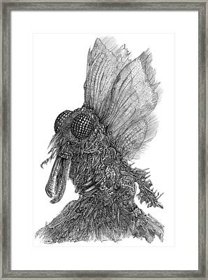 Ambiton Framed Print by Joe MacGown