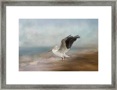 Framed Print featuring the photograph Amble Along The Shore by Kim Hojnacki