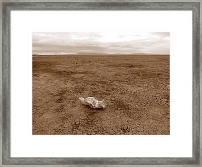 Amboseli Lake Framed Print