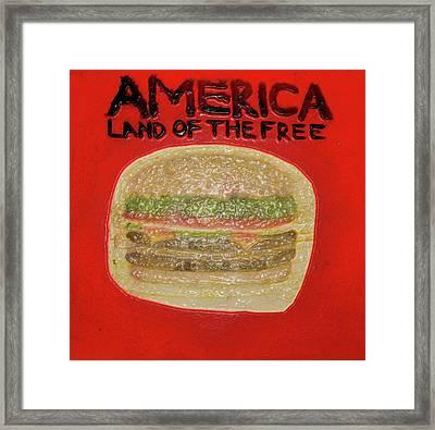 America Framed Print by Shernone M