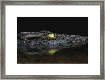 American Aligator Framed Print