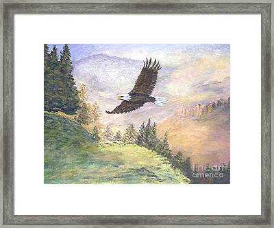 American Bald Eagle Framed Print by Nicholas Minniti