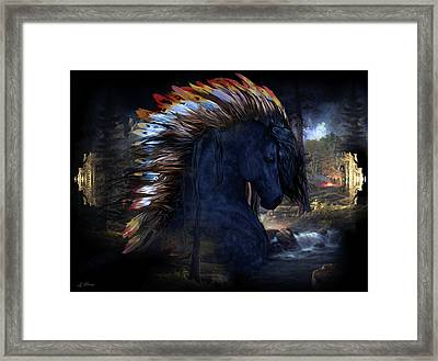American Beauty 002 Framed Print by G Berry