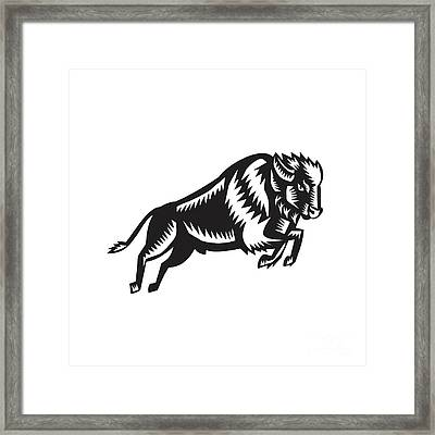 American Bison Buffalo Jumping Woodcut Framed Print by Aloysius Patrimonio