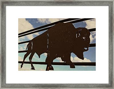 American Bison Silhouette Framed Print