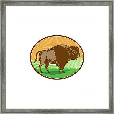 American Bison Oval Woodcut Framed Print