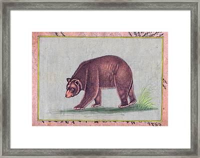 American Black Bear India Vintage Miniature Painting Watercolor Artwork Framed Print by B K Mitra