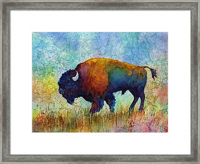 American Buffalo 5 Framed Print by Hailey E Herrera