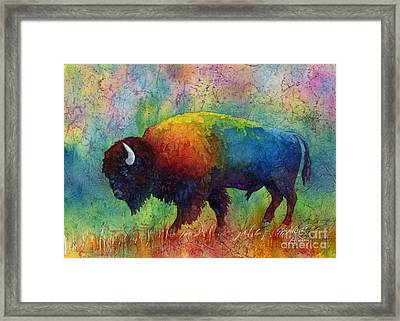 American Buffalo 6 Framed Print by Hailey E Herrera