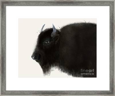 American Buffalo Framed Print by Bri B