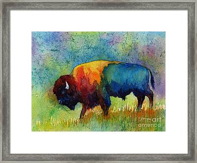 American Buffalo IIi Framed Print by Hailey E Herrera