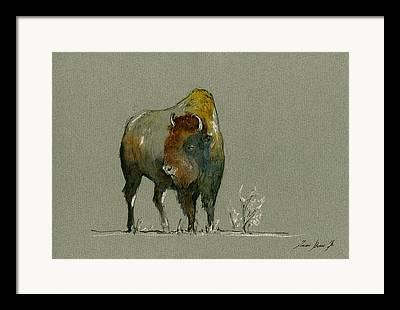 Buffalo Art Framed Prints