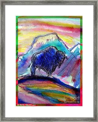 American Buffalo Sunset Framed Print