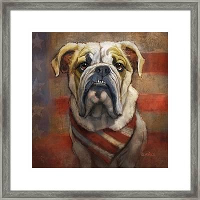 American Bulldog Framed Print