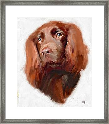 Spaniel Dog Art Canvas Print Of Vya Painting  Framed Print