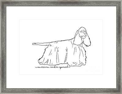 American Cocker Spaniel Sketch Framed Print by Pablo Romero