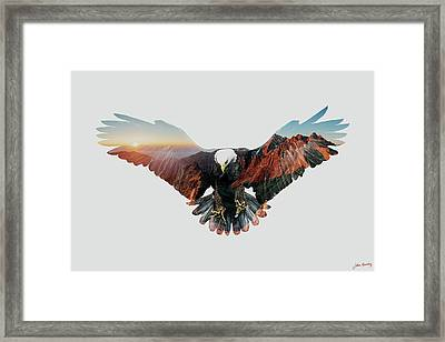 American Eagle Framed Print by John Beckley