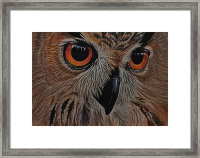 American Eagle Owl Framed Print
