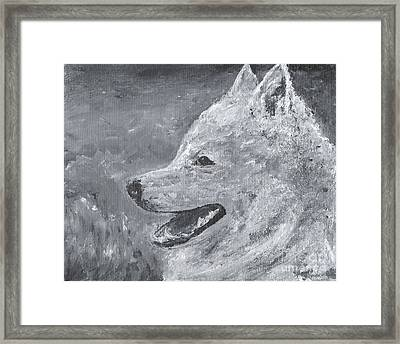 American Eskimo Dog - Spitz Framed Print by Jennifer Gonzalez