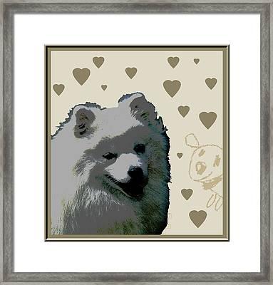 American Eskimo Framed Print by One Rude Dawg Orcutt