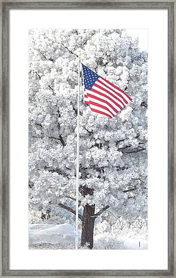 American Flag Snow  Framed Print by Phyllis Britton