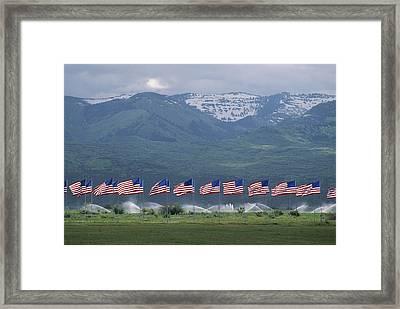 American Flags Honoring Veterans Framed Print by James P. Blair