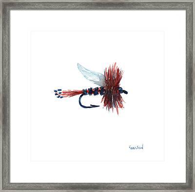 American Fly Framed Print by Sean Seal