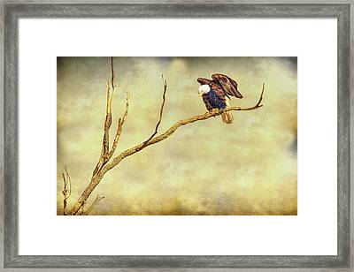 Framed Print featuring the photograph American Freedom by James BO Insogna