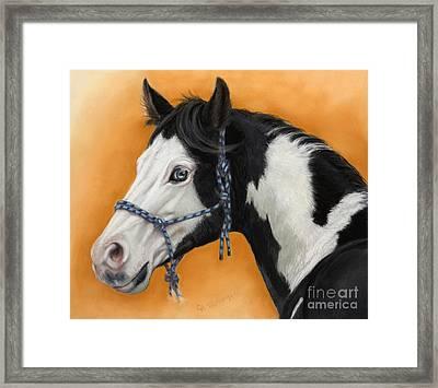 American Paint Horse - Soft Pastel Framed Print by Svetlana Ledneva-Schukina
