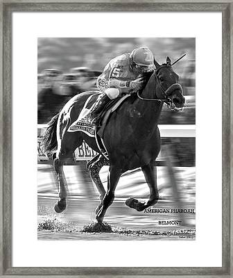American Pharoah And Victor Espinoza Win The 2015 Belmont Stakes Framed Print