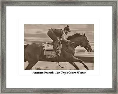 American Pharoah Framed Print by See My  Photos