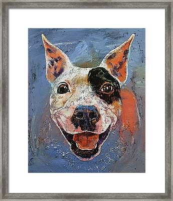 Happy Pitbull Framed Print